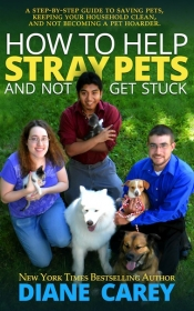 How to Help Stray Pets & Not Get Stuck